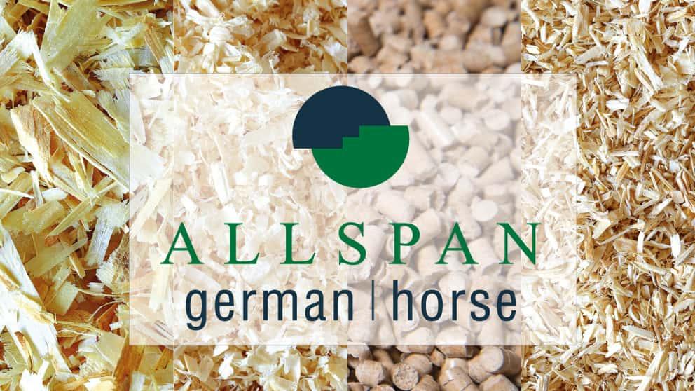 Allspan German Horse