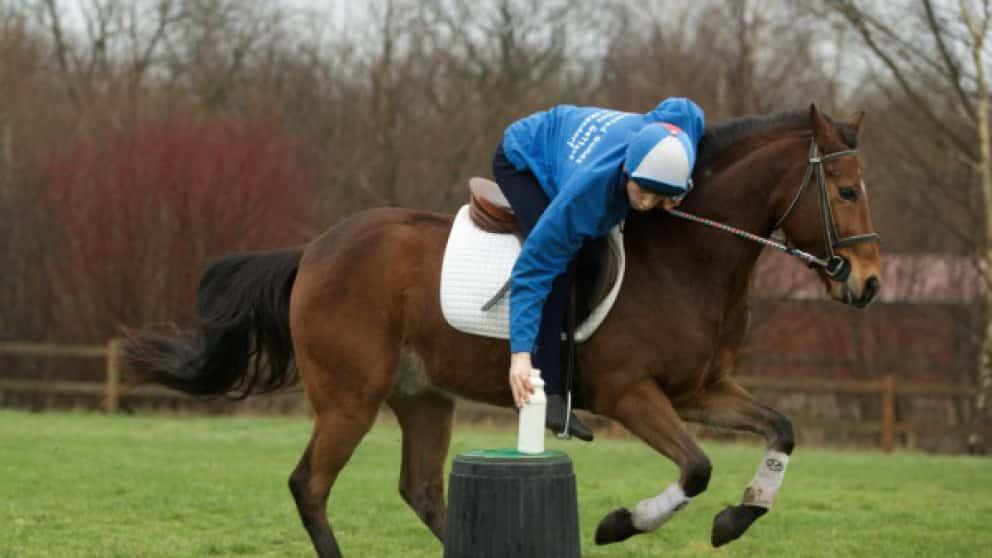 Pony-Action